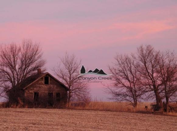 homestead-c9b-l0d4.jpg