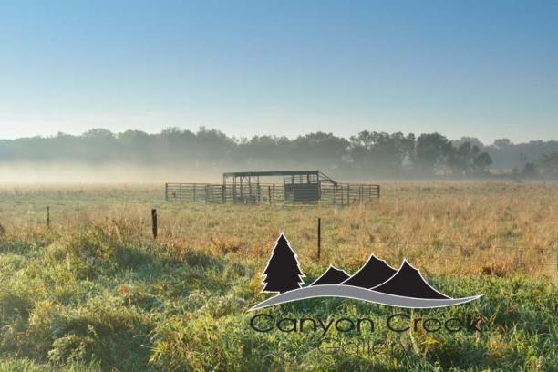 morning-corral-nqq-hkf5.jpg