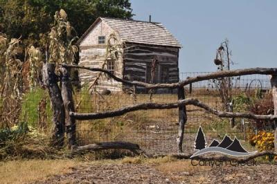 Barns and Farmsteads